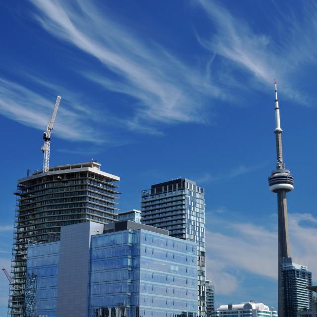 """Toronto Summer"" stock image"