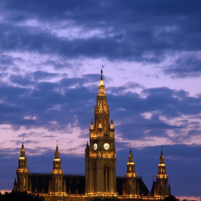 """The Vienna City Hall"" stock image"