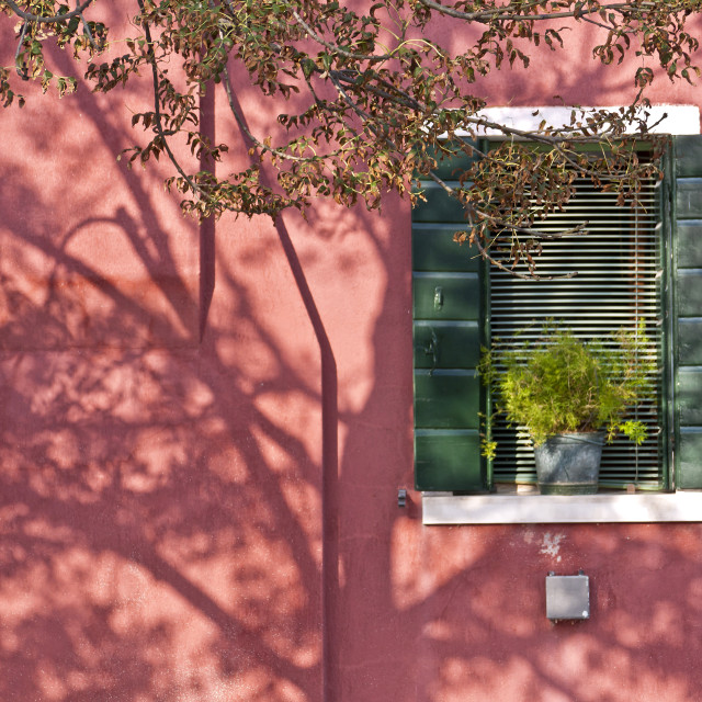 """""""Green Shutters and Shadows"""" stock image"""