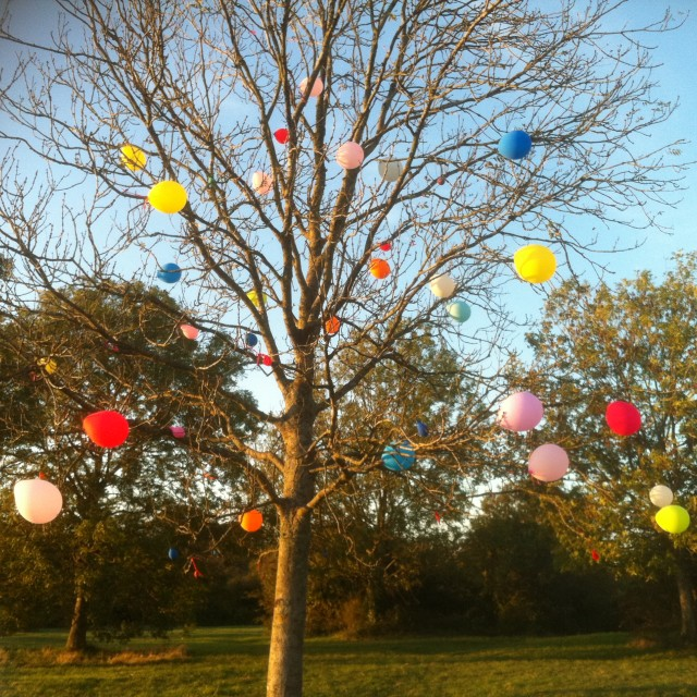 """""""Celebratory Balloons in a Tree"""" stock image"""