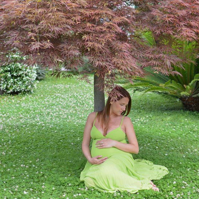 """Pregnant"" stock image"
