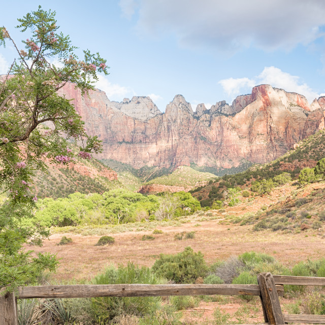 """West Temple, Sundial, Altar of Sacrifice, and Tower of the Virgins, Zion National Park, UT"" stock image"