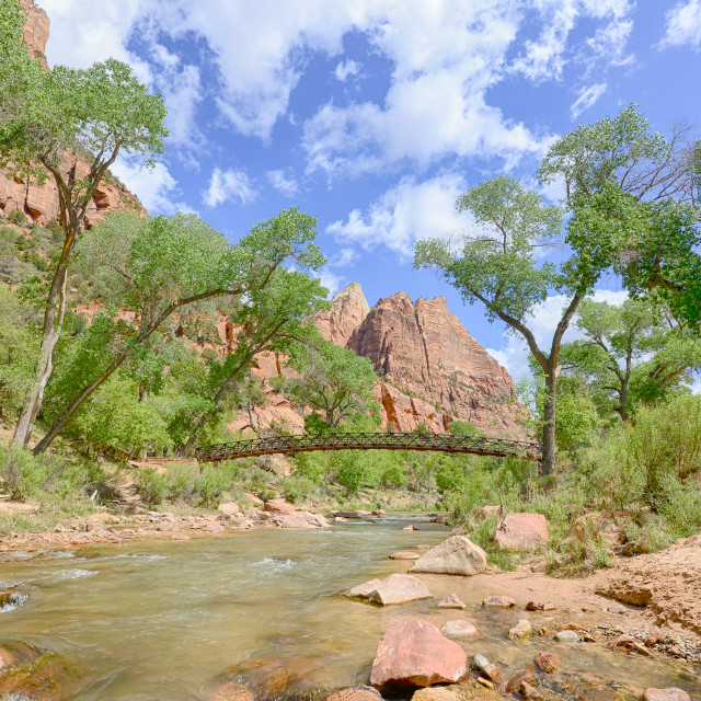 """Emerald Pools Bridge, Virgin River, Zion National Park, UT"" stock image"