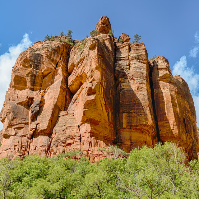 """The Organ, Zion National Park, Utah"" stock image"