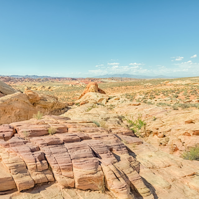 """Rainbow Vista, Valley of Fire State Park, NV"" stock image"