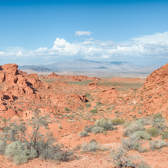 """Old Arrowhead Historic Trail, Valley of Fire State Park, NV"" stock image"
