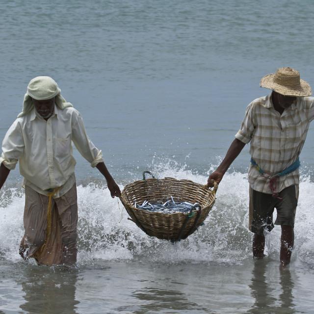 """Traditional fishermen in Uppuveli beach, Sri Lanka"" stock image"