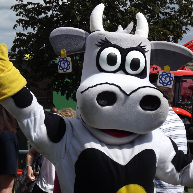 """A cartoon cow"" stock image"
