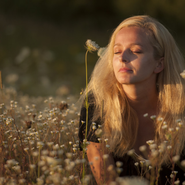 """Young girl relaxing on the meadow"" stock image"