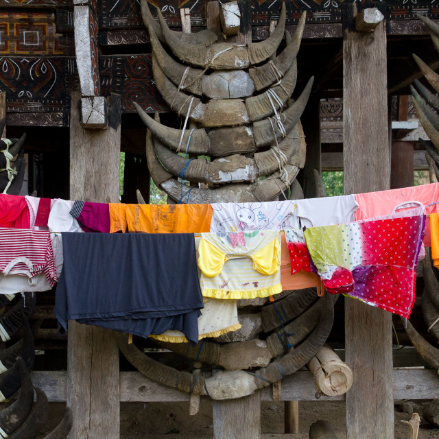 """Skull Laundry"" stock image"