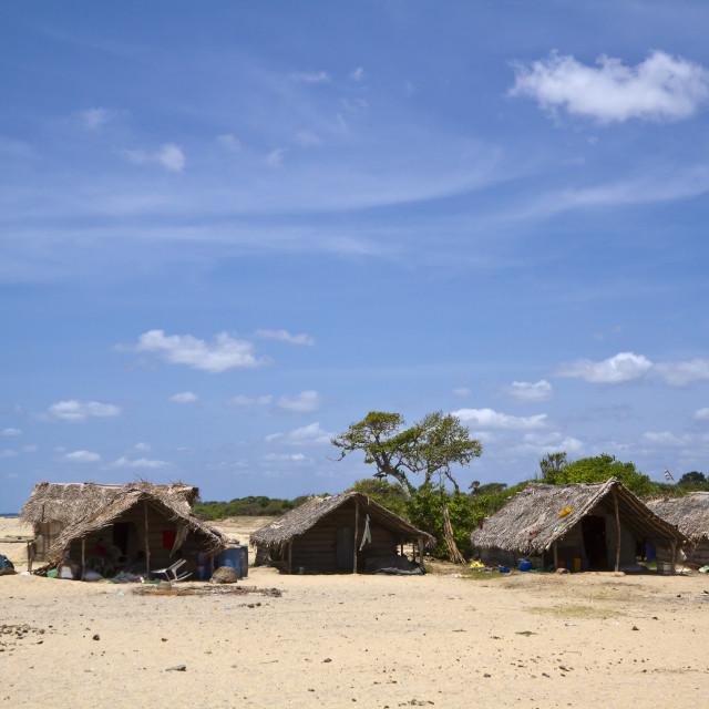 """""""Fishermen hut in Polmoddai, Sri Lanka"""" stock image"""