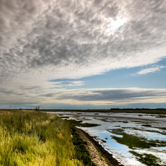 """Mersea Strood at low Tide"" stock image"