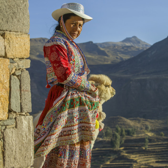 """Native Peruvian woman with baby alpaca"" stock image"