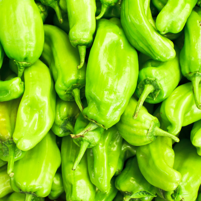 """green jalapeno peppers"" stock image"