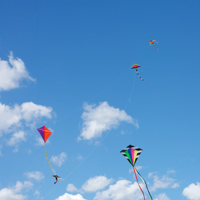"""Kites Flying Together"" stock image"