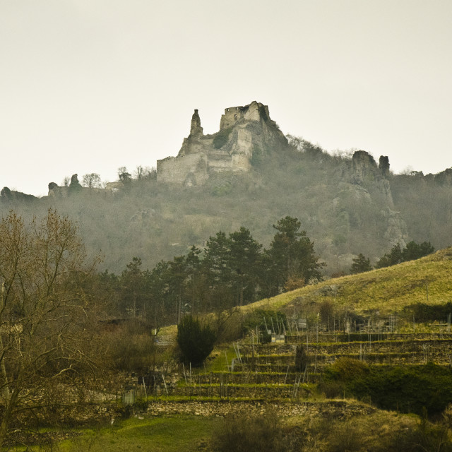 """Ruins of Hinterhaus Castle"" stock image"