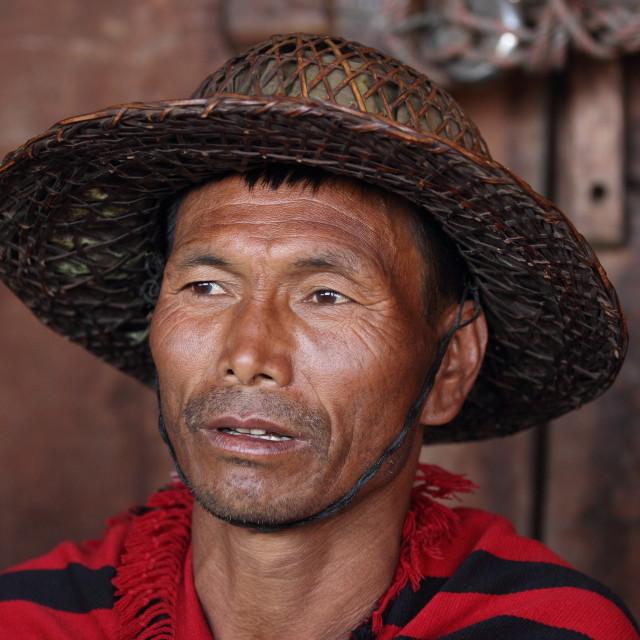 """""""Naga Man at the Hornbill Festival"""" stock image"""