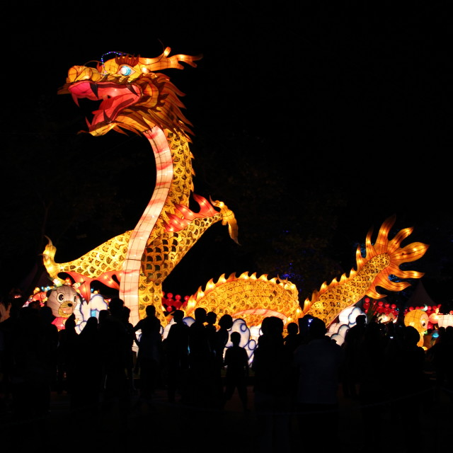 """Dragon Lantern"" stock image"