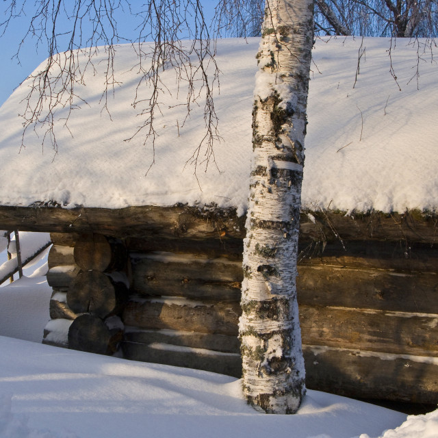 """""""Wood and Snow"""" stock image"""