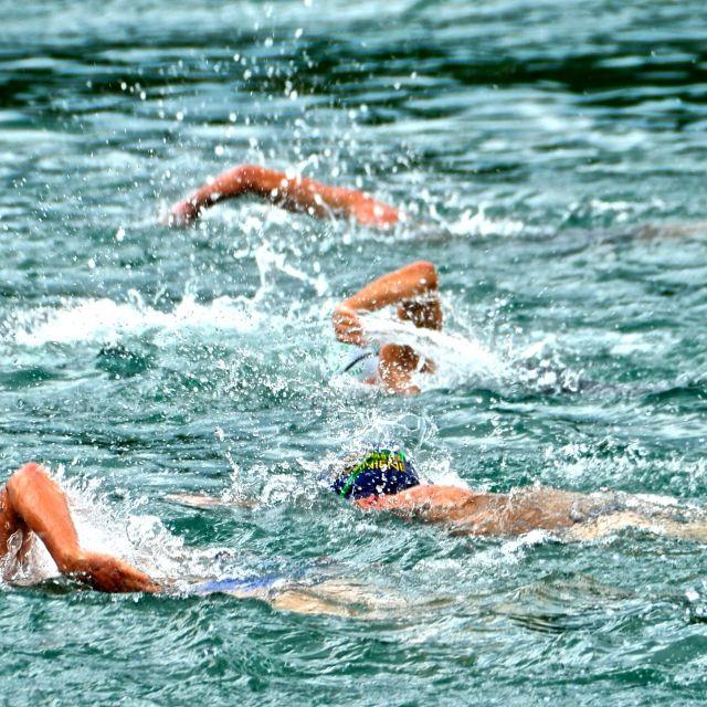 """""""Gara di nuoto al lago di Scanno"""" stock image"""