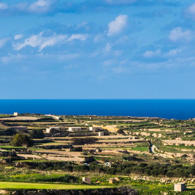 """""""Gozo Landscape"""" stock image"""
