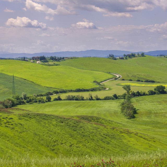 """Beautiful Tuscany"" stock image"