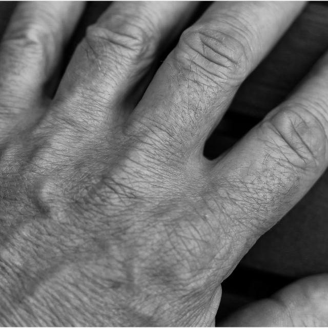 """Hand"" stock image"