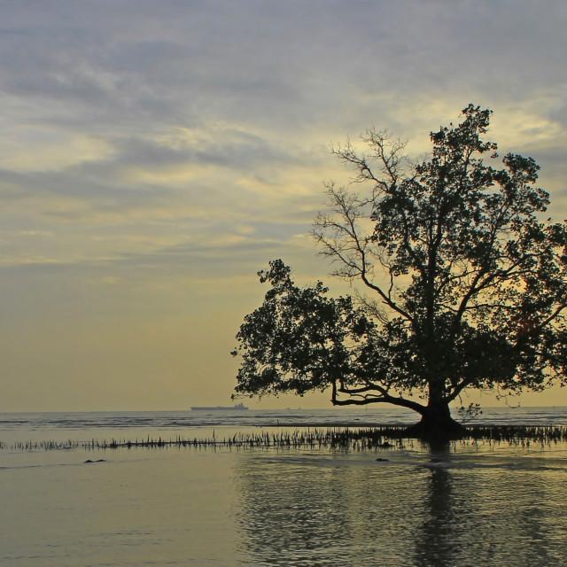 """Teluk Gong ~ Sunset"" stock image"