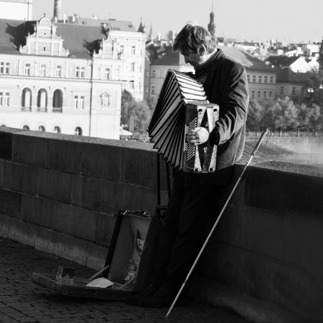 """An accordionist"" stock image"