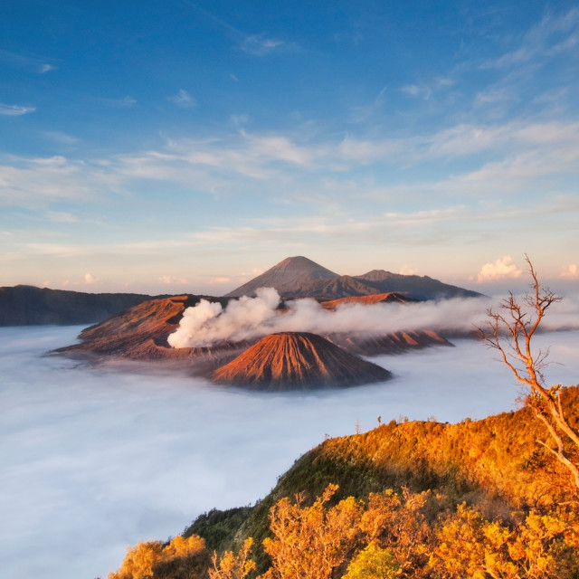 """Mount Bromo Sunrise"" stock image"