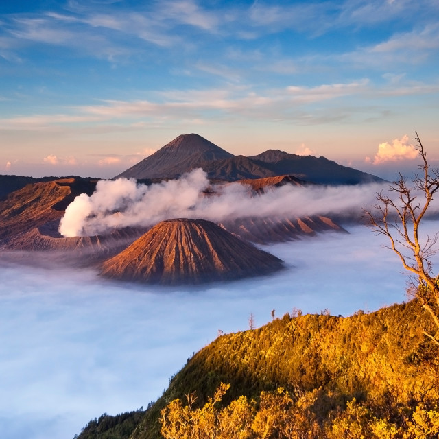 """Mount Bromo Volcano Sunrise"" stock image"