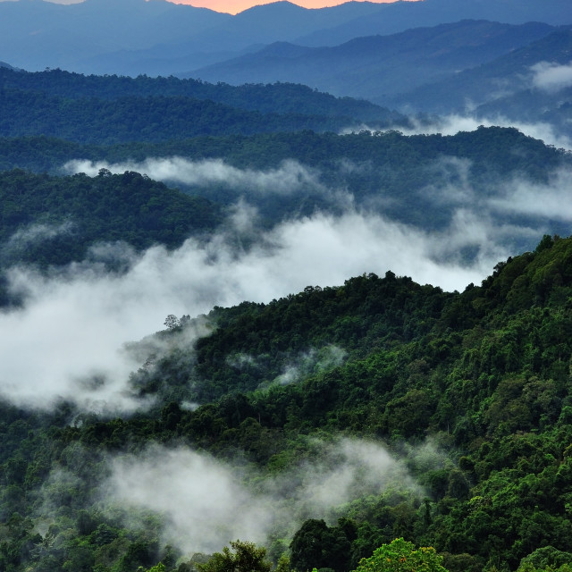 """""""Sunset over mountains of Borneo with sunbeam"""" stock image"""