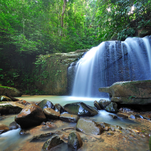 """Waterfall in a Borneo Jungle"" stock image"
