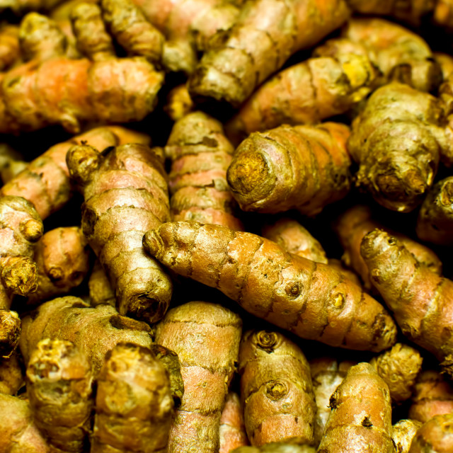 """Group of Turmeric roots"" stock image"