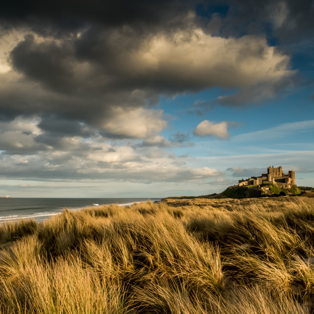 """Bamburgh Castle, Northumberland"" stock image"