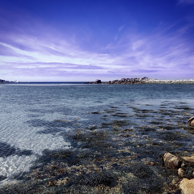 """Bryher Beach, Scilly Isles"" stock image"