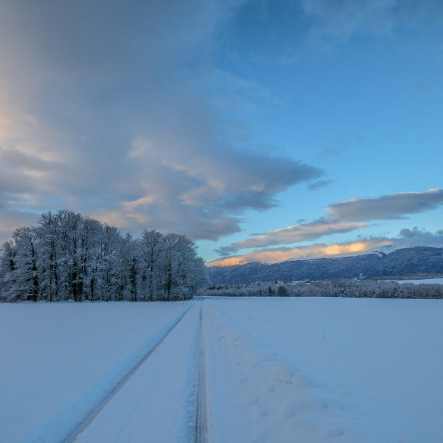 """Winter Landscape"" stock image"