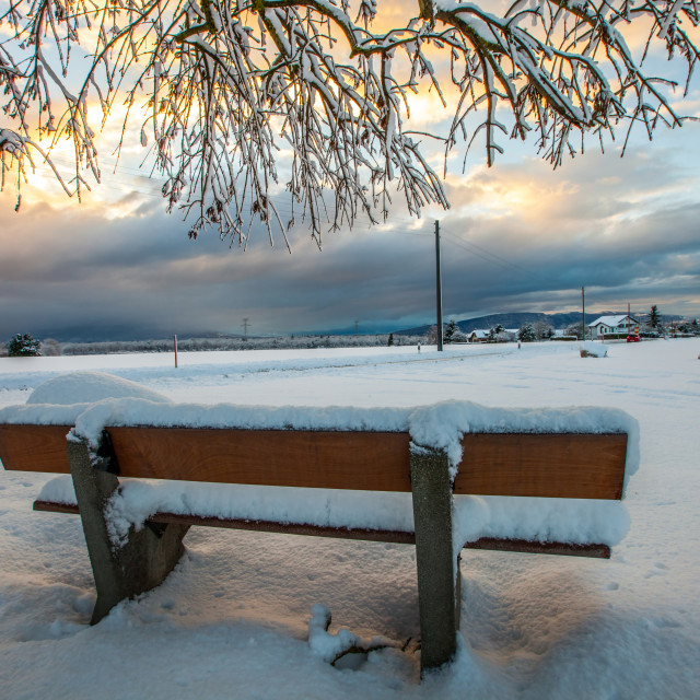"""Wooden Winter Bench"" stock image"