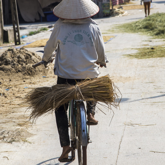 """Lady on a bicycle in Vietnam."" stock image"