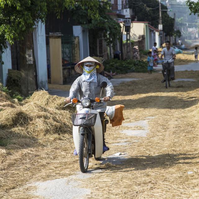 """Vietnamese farming village."" stock image"