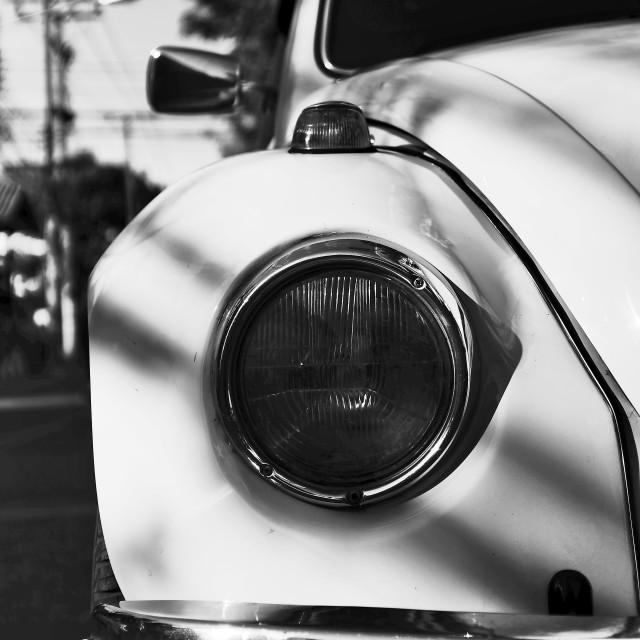 """Monochrome Beetle"" stock image"