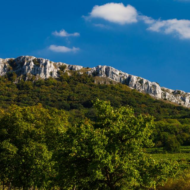 """Palava hills"" stock image"