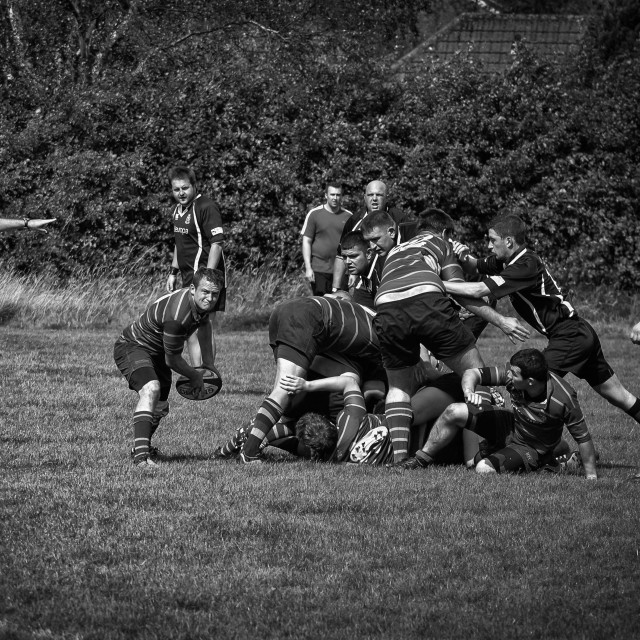 """Out of the scrum"" stock image"
