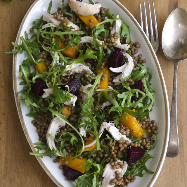 """""""Chicken, lentil and squash medley"""" stock image"""