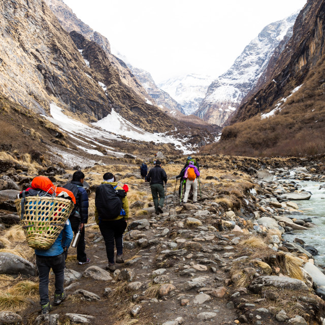 """""""A group of people hiking towards serene snowy mountain"""" stock image"""