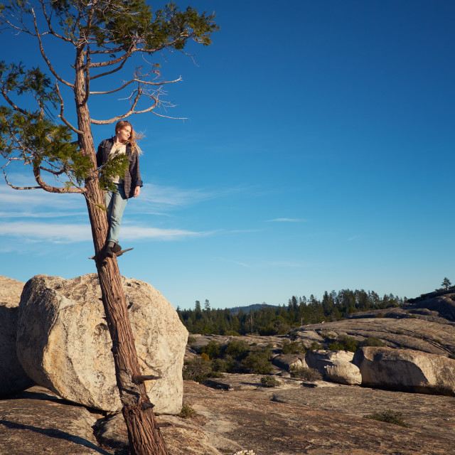 """""""Woman in a Tree Looking the View"""" stock image"""