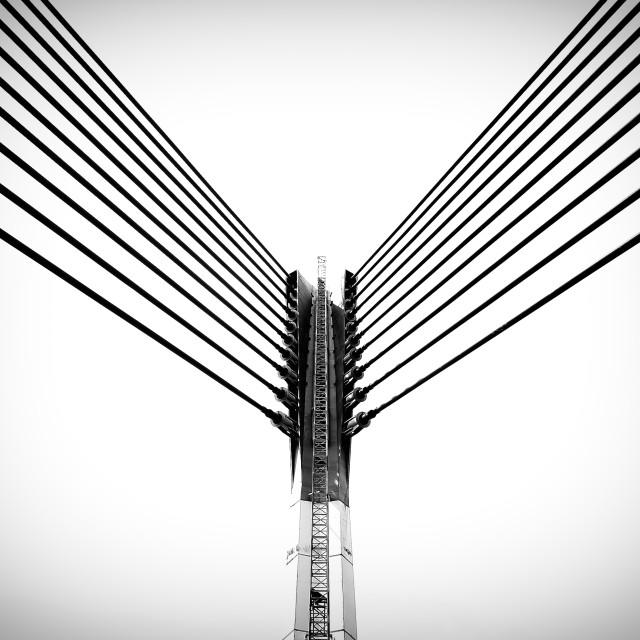 """Modern bridge architecture at Putrajaya (Black and white)"" stock image"