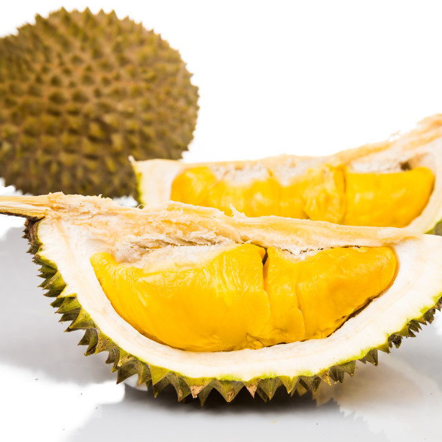 """""""Durian, the King of Fruits"""" stock image"""