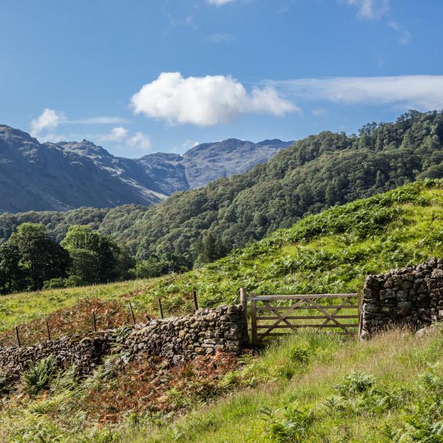 """Cumbrian Landscape"" stock image"