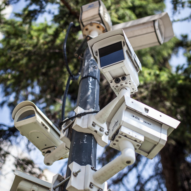 """Surveillance Tree"" stock image"